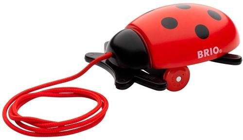BRIO speelgoed Lieveheersbeestje assortiment (3kleuren)-1