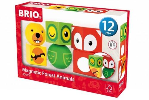 BRIO speelgoed Magnetische bosdieren-1